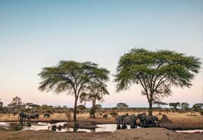 imagen viaje a Zimbabue recorriendo el país